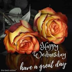 Good Morning Monday Messages, Good Morning Friday Pictures, Good Morning Tuesday Wishes, Happy Saturday Images, Good Morning Happy Saturday, Latest Good Morning Images, Good Morning Picture, Morning Quotes, Happy Thursday