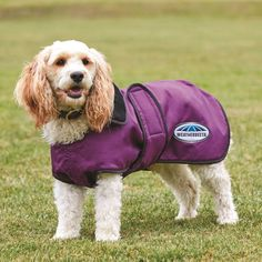 WeatherBeeta+Windbreaker+420D+Deluxe+Dog+Rug+Purple/Black+-+WeatherBeeta+Windbreaker+420D+Deluxe+Dog+Rug+Purple/Black.+The+WeatherBeeta+Windbreaker+420D+Deluxe+Dog+Rug+offers+a+showerproof+and+strong+420+denier+outer+with+a+boa+fleece+lining+for+extra+warmth.+The+Windbreaker+Dog+Rug+features+a+full+wrap+belly+closure+for+extra+warmth+and+an+extended+neck+cuff+with+a+lead+hole+for+added+convenience.