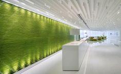 Neo Derm High End Facilities by Beige Design