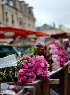 Peonies at Paris flower market