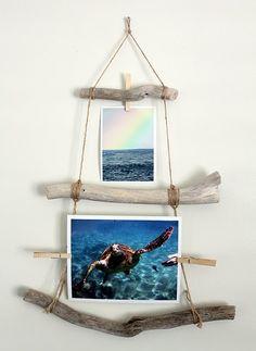 Driftwood photograph holder idea