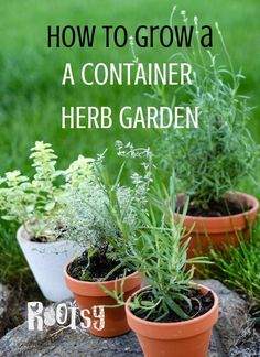Gardening Herbs Container herb gardens are a great way to keep herbs handy and ready to use. Learn how to grow herbs in containers indoors and outside, how to select containers, what soil to use, how often to water, and what herbs to plant together.