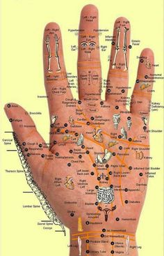 Those of you who are familiar with Acupuncture or Acupressure would know that in Salaath [ prayer] everything you do is staying healthy touching all the right pressure points.Eating with your Right hand is sunnah {with spoon not sunnah.} and Sucking your fingers after meal is also Sunnah helps Easy digestion.
