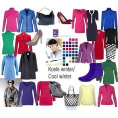 Jouw topkleuren zijn in volgorde van belangrijkheid: 1. koel, 2. helder en lopen 3. van licht naar donker (licht tot medium donker is het beste). Twijfel je of een kleur bij jouw kleurtype past? Leg dan de uit elkaar geschoven kleurenwaaier op het kledingstuk. Er moet een harmonie ontstaan tussen het kledingstuk wat je wilt aanschaffen en de waaier. 'Stoten' de kleuren elkaar af dan is de kleur niet geschikt voor jou. Een aantal van de favoriete kleuren voor het koele wintertype zijn…