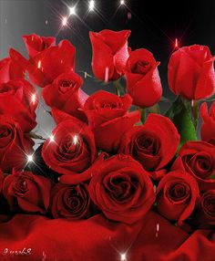 The perfect Flowers RedRoses Glitter Animated GIF for your conversation. Discover and Share the best GIFs on Tenor.