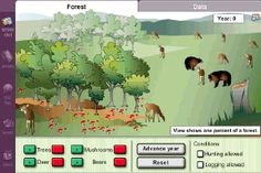 Observe and manipulate the populations of four creatures (trees, deer, bears, and mushrooms) in a forest. Investigate the feeding relationships (food web) in the forest. Determine which creatures are producers, consumers, and decomposers. Pictographs and line graphs show changes in populations over time.