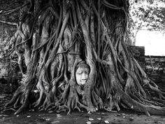#WahMahaThat #Ayutthaya #Thailand