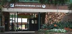 The Johannesburg Zoo