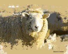 Sheep Art Sepia Lamb Farm Ranch Animal Herd by GrayWolfGallery Alpacas, Ranch, All Things Wild, Sheep Art, Timing Is Everything, Angora Rabbit, Fiber Art, Folk Art, Lamb