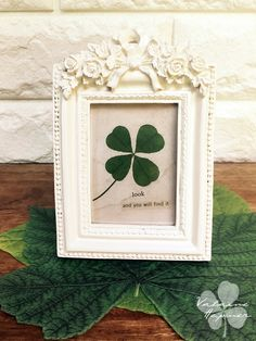 REAL Four Leaf Clover In Frame With Words 4 Genuine White