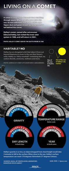 Living on a Comet: 'Dirty Snowball' Facts Explained #Infographic. via @spacedotcom