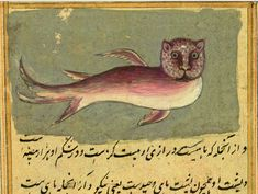 The Wonders of Creation by Persian scholar Zakariy al-Qazwini (1203–1283). Часть 2.