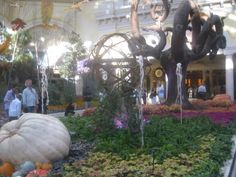 Love this covered oasis in the Bellagio, Las Vegas