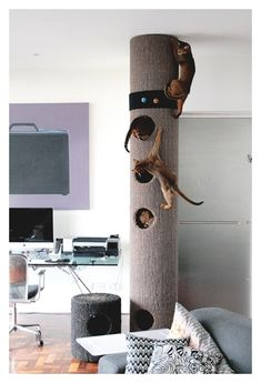 This tower is a Must for the fire cat and is a great project for the earth man…