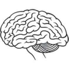 What Causes the Brain to Have Slow Processing Speed, and How Can the Rate Be Improved?