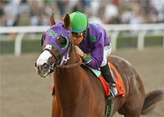 Tomorrow starts the Breeder's Cup Series! I can't wait for this. For me, after the Triple Crown races, is the most incredible racing event. Tomorrow, the superstars Beholder, Stellar Wind and the undefetead Songbird will run in the Breeder's Cup Distaff, and Dortmund, Runhappy, Gun Runner & Tom's Ready will run in the Breeder's Cup Las Vegas Dirt Mile. But definitively I can't wait for the 2016 Breeder's Cup Classic! It's a tremendous race and machines like Arrogate, Melatonin, Effinex…