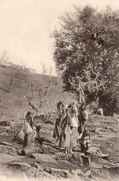 Femmes kabyles faisant sécher les olives
