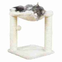 Trixie Baza Scratching Post Cream | Pet-Supermarket.co.uk
