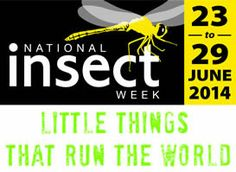 Visit the National Insect Week website