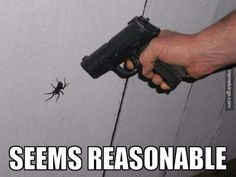 """Jump, I Dare You - Funny memes that """"GET IT"""" and want you to too. Get the latest funniest memes and keep up what is going on in the meme-o-sphere. Funny Shit, Haha Funny, Funny Cute, Funny Memes, Funny Stuff, Jokes, Funny Spider Memes, Spider Humor, Spider Quotes"""