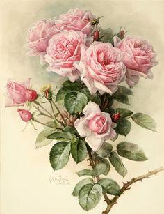 - Paul de Longpr'e (1855-1911) Mais
