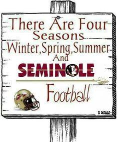Florida State Seminoles!