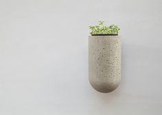 concrete pill garden
