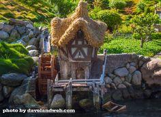 Disneyland.   Fairy Garden Ideas