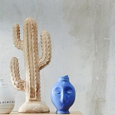 Freedom NZ Instagram | Cacti and Vase Vignettes