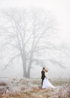 Must take pictures like this in fog! Soooo lovely.