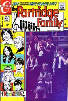 The musical sitcom family of the 70s got a comic book. In your face, Bradys!