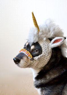 It's a unicorn! No wait, it's a dog!