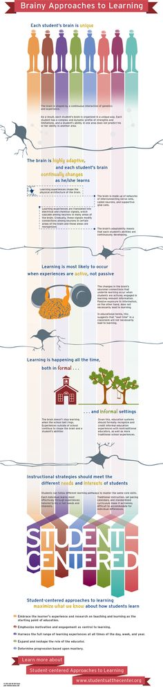 Rescooped by Barbara Bray from UDL - Universal Design for Learning onto Making Learning Personal (#plearnchat)  Scoop.it!  Brainy Approaches to Learning Infographic | Students at the Center