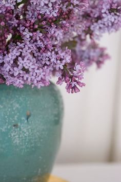 Lilac-photo by Carolyn Parker