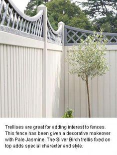 Love the combination of Cuprinol Pale Jasmine fence with the Silver Birch trellis. Think bamboo would look striking against this. Garden Fence Paint, Painted Garden Sheds, Garden Fencing, Garden Shrubs, Shade Garden, Garden Landscaping, Back Gardens, Small Gardens, Outdoor Gardens