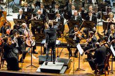 Lee Mills, Maestro Residente da OSB, e orquestra no Municipal do RJ. Claude Debussy, Ant, Orchestra, Concerts, Home