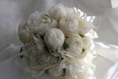 Bridal Bouquets Designs | white wedding bouquet a bouquet of white traditional simple flowers