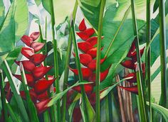 kathleenalexanderart | Tropical Flowers and Foliage