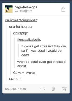 The world's greatest coral joke: | 32 Of The Greatest Things That Happened On Tumblr In 2014