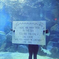 304 Most inspiring Will you marry me? images | Proposals, Marriage