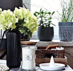 Un intérieur rempli de végétaux et une bougie parfumée WoodWick, le mélange parfait pour un intérieur pure et cocooning ( @szaryland) ・・・ #pepco #pepcomania #woodwick #kiktextilien #sklepkik #jysk #jyskpolska #rossmannpolska #biedronka #sunday #sundaydinner #weekend #november #fleurs #fleuriste #bougie #vegetal #decoration #magazine #design #beautyaddict #designaddict #cocooning #sain #safe #vase #osier #objet #photography #photo
