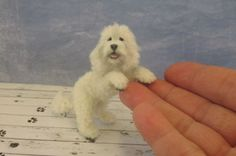 OOAK-dollhouse-Miniature-Dog-1-12-scale-Labradoodle-Handmade-furred-pet