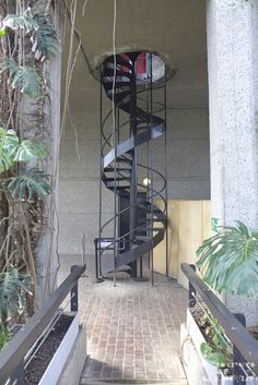 Barbican Conservatory by Chamberlin, Powell and Bon Barbican Conservatory, Take The Stairs, Spiral Staircase, Le Corbusier, London City, Architecture Details, Home And Garden, Indoor, Repurpose