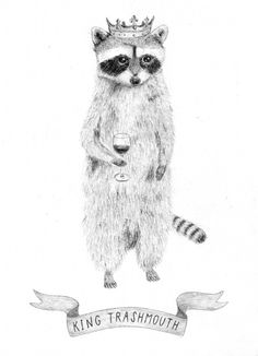 Well, there wasn't a raccoon king in our alley until I went out there and picked my favorite one. His name is Little King Trashmouth.