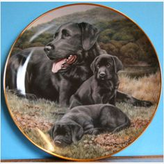 Fathers Pride and Joy Labrador Plate by Franklin Mint Painted by Nigel Hemmings on eBid United Kingdom £15.00 or Make an Offer
