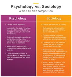 Psychology: Which Degree is Right for Me? Psychology: Which Degree is Right for Me? Psychology Notes, Psychology Careers, Psychology Studies, Psychology Degree, Gcse Psychology, Psychology University, Humanistic Psychology, Psychology Humor, Sociology Quotes