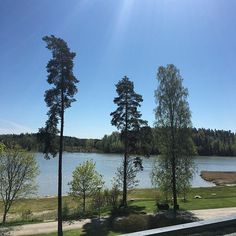 Lounasmaisemia. Kelpaa! ☀️ #pinghelsinki #kirkkonummi #långvik #sunnyday #kesä2016 #summer2016 #visitkirkkonummi #clearsky