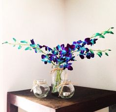 Blue orchids, jars