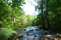Vive el día mundial del medio ambiente en #Santander el próximo 5 de junio #Cantabria #Spain