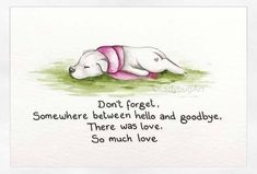 It's a sad day in our house. We had to say goodbye to our old man cat today. He was 15 years old, and we'd had him since he was around… Pet Loss Grief, Loss Of Dog, I Love Dogs, Puppy Love, Cute Dogs, Dog Loss Quotes, Dog Loss Poem, Dog Poems, Pet Remembrance